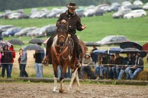 Bei Bernd Hackl am Tag der offenen Tür: Vorführung der Pferde- und Reitausbildung in Anlehnung an die klassisch-kalifornische Tradition