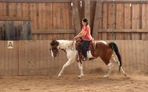 Jutta Schönswetter: Reitweisen übergreifende Reitausbildung im Einklang mit dem Pferd