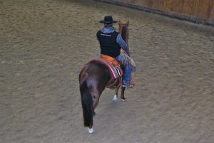 Pferde- und Reitausbildung in Anlehnung an die kalifornische Tradition